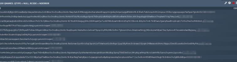 DNS data exfiltration