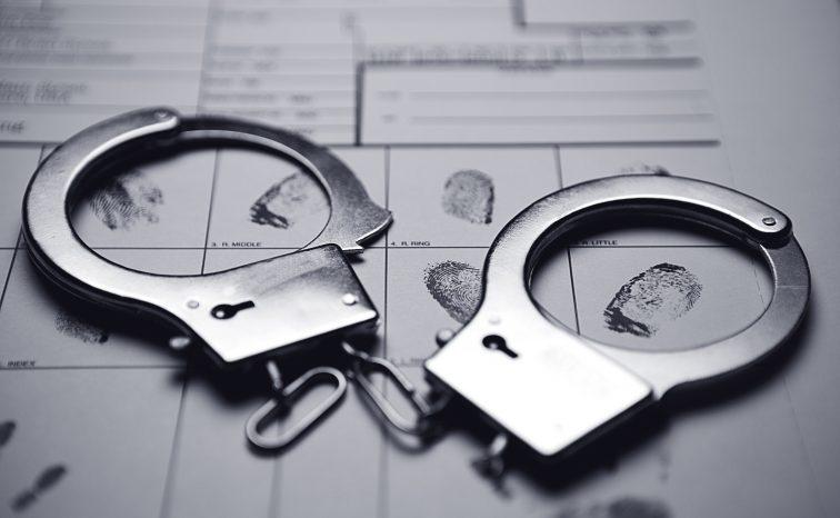 Charlie McMurdie: 'We should emulate the criminals'
