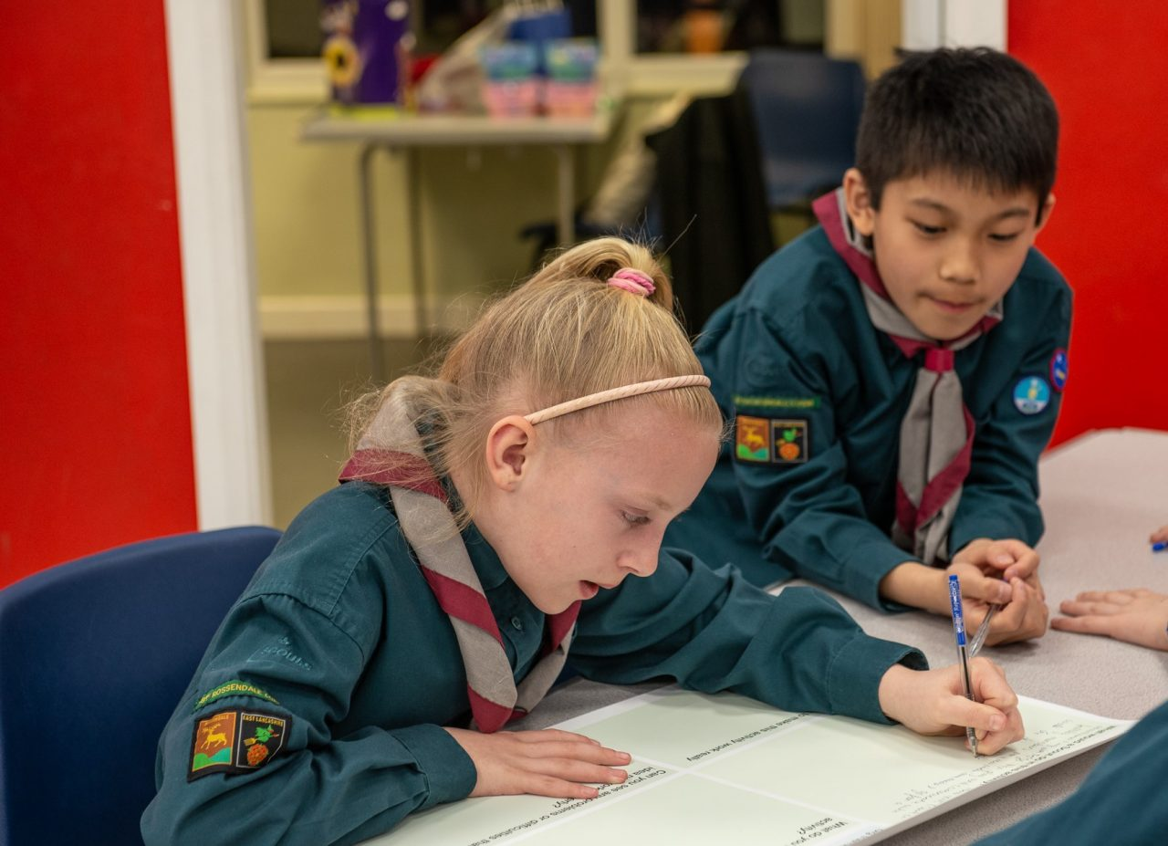 Scouts for internet safety