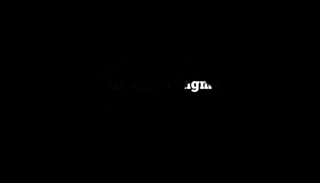 Chasing the Stigma logo